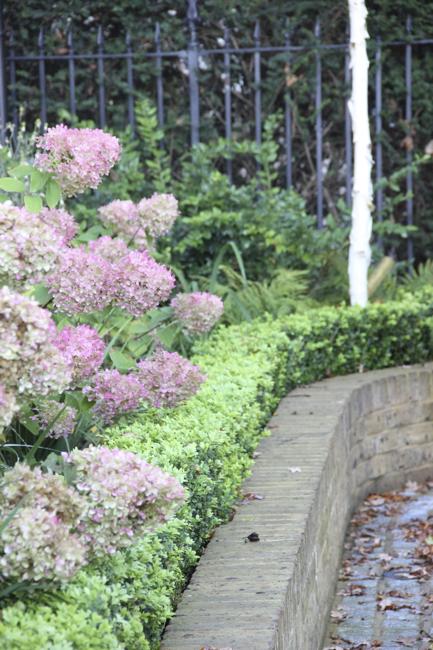 Garden Design Enfield : Totteridge lane garden amanda broughton design