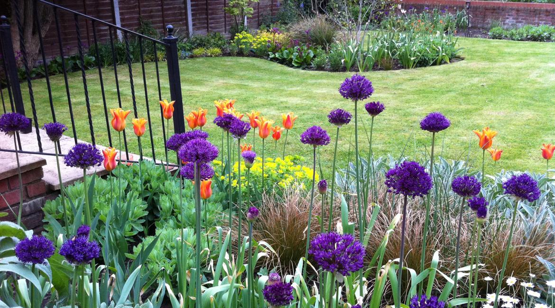 Garden Design Enfield : Curvaceous totteridge lane garden amanda broughton design